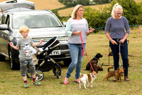 Terrier, Lurcher and Family Dog Show 23/7/17